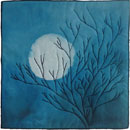 Once in a Blue Moon ©2010 Brenda Gael Smith